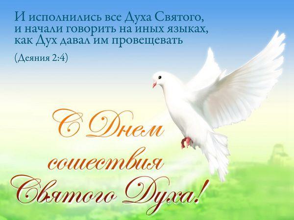 Красивая открытка на Духов день