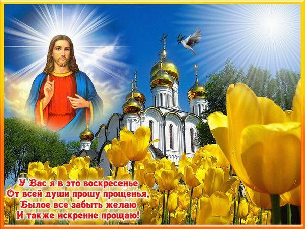 Картинка прошу прощенья