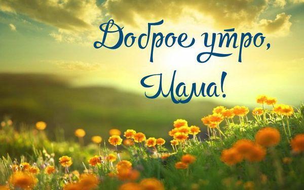 Открытка маме поле с цветами
