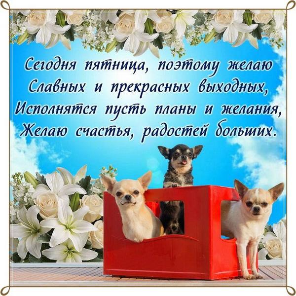 Желаю славных и прекрасных выходных
