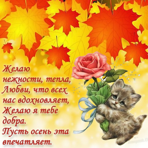 Желаю доброго утра осени