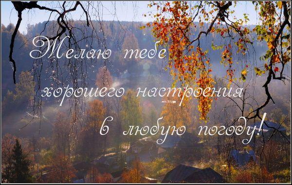 Желаю тебе хорошего настроения в любую погоду
