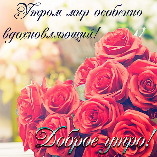 Дарю тебе букет роз и желаю доброго утра
