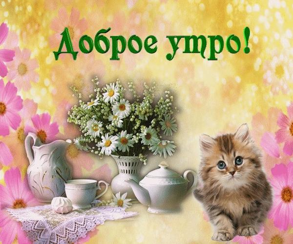 Картинка с милым котиком и чашечкой чая с утра