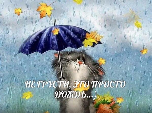 Не грусти - это просто дождь