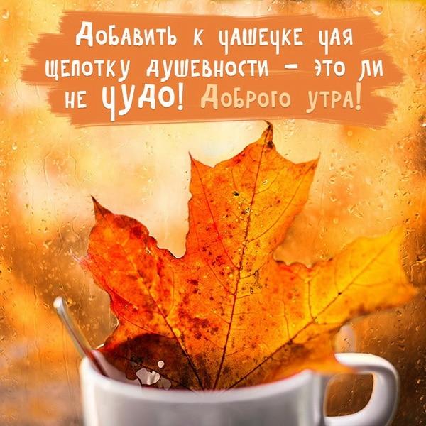 Чашечка чая и кленовый лист