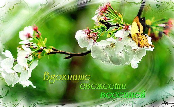 Вдохните свежести весенней