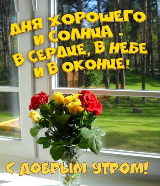 Букет цветов и лес под лучами солнца