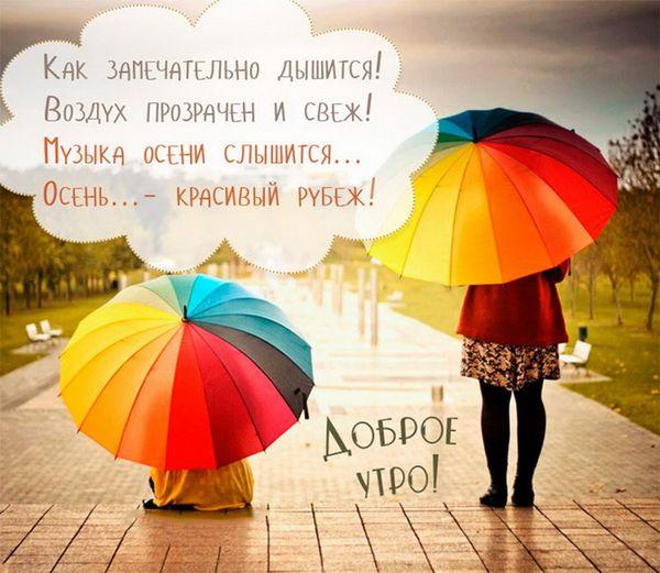 Картинка с разноцветными зонтиками в дождливое утро