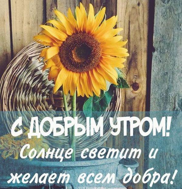 Картинки с добрым утром и цветами