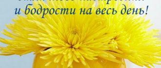Желаю тебе отличного настроения и бодрости на весь день