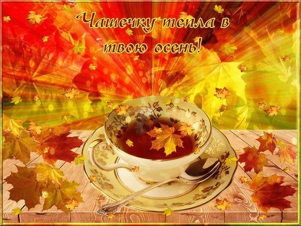 Чашечку тепла в твою осень