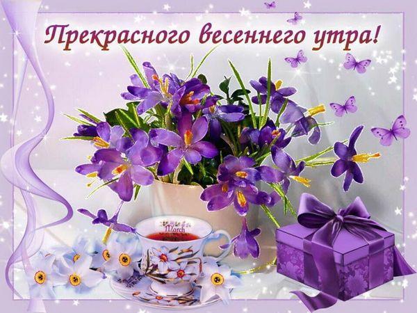 Прекрасного весеннего утра