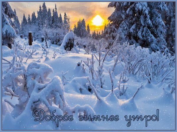 Картинка доброе зимнее утро