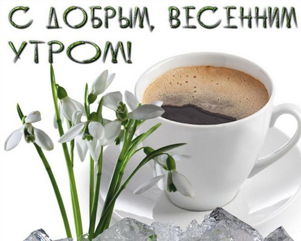 Пожелания с добрым утром друзьям в прозе небольших ресторанов