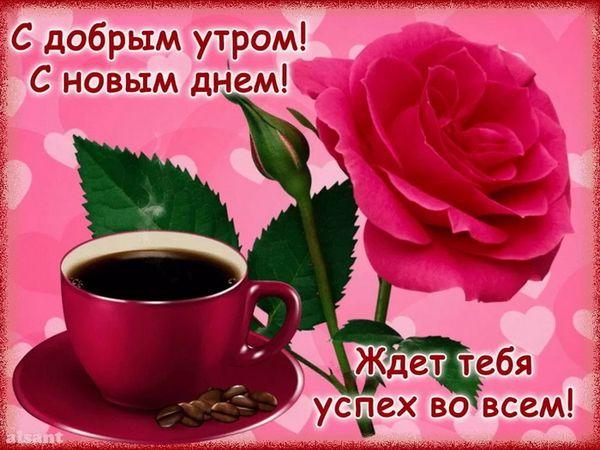 Кофе и роза ранним утром девушке