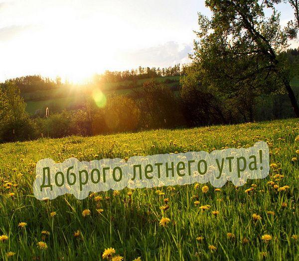 Открытка доброго летнего утра