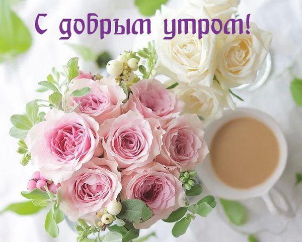 Желаю доброго утра и дарю тебе цветы