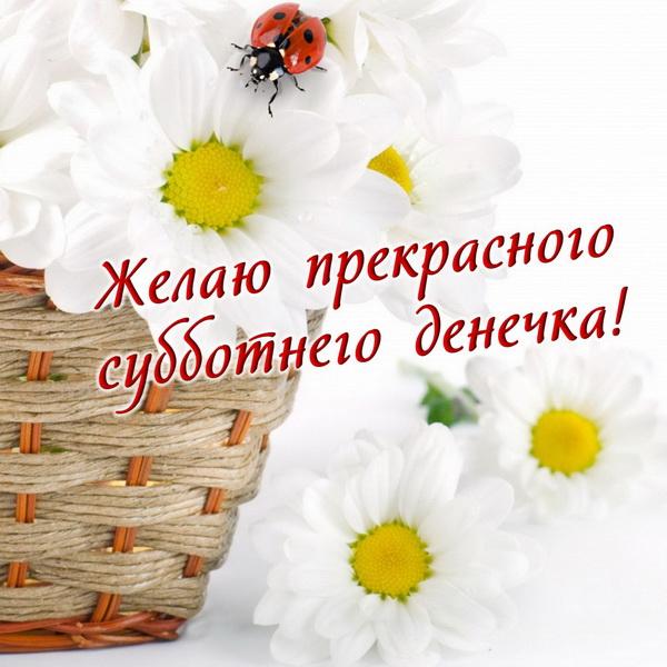 Желаю прекрасного субботнего денёчка
