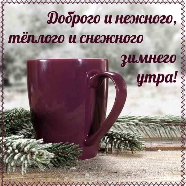 Доброго и нежного зимнего утра