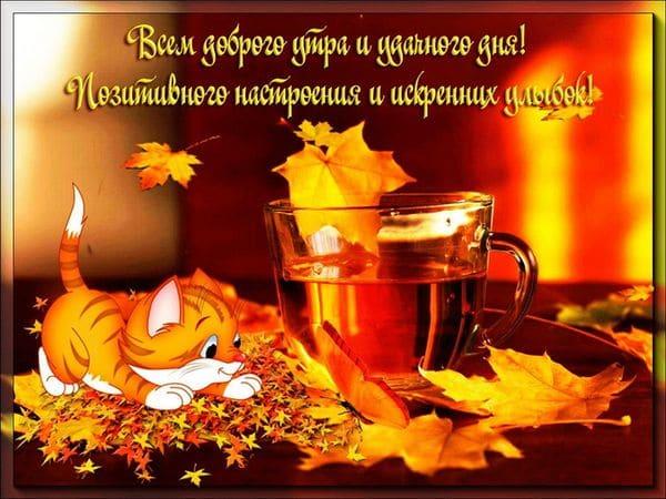 Всем доброго осеннего утра и удачного дня