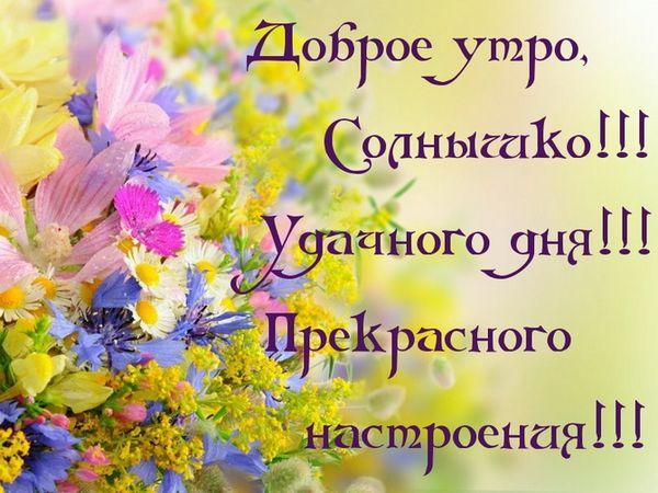 Удачного дня и прекрасного настроения
