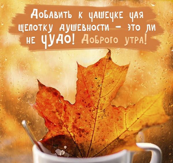 Кленовый лист и кофе осенним утром