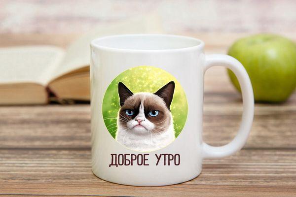 Картинка с добрым утром и злым котом