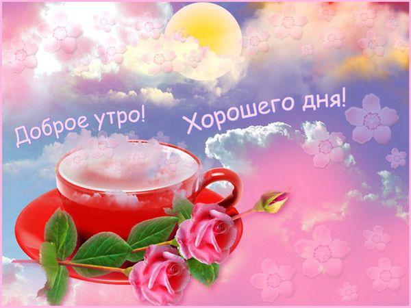 ᐉ Пожелание счастливого дня. Оригинальные пожелания любимому ... | 450x600