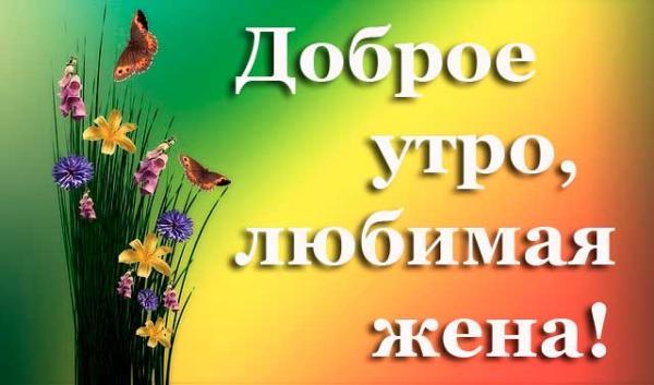 Цветы жене и пожеление доброго утра