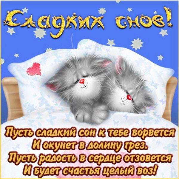 Картинка с котиками желающих спокойной ночи