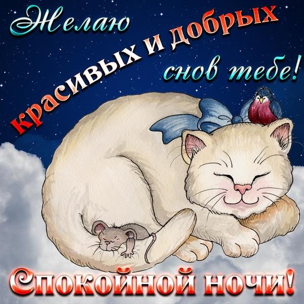 Желаю красивых и добрых снов тебе