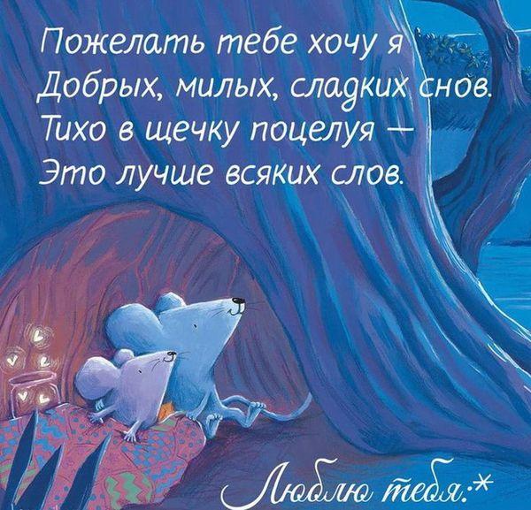 Люблю тебя и желаю спокойной ночи