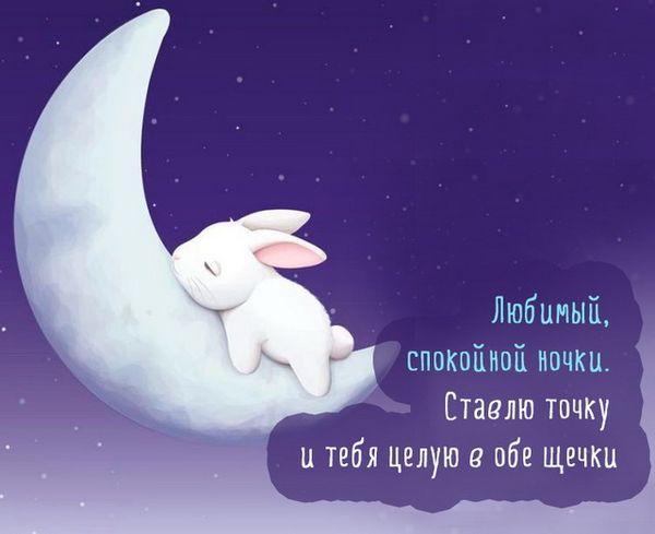 Любимый мой, я желаю тебе спокойной ночи