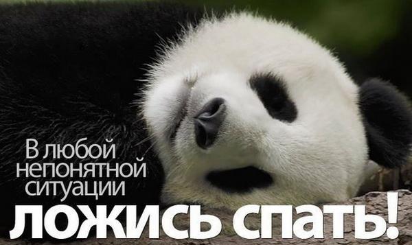 Ложись спать в любой непонятной ситуации