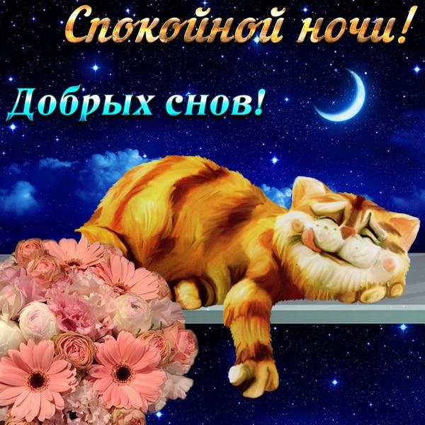 Спокойной ночи и добрых снов
