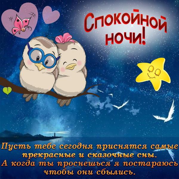 Милые птички желают спокойной ночи