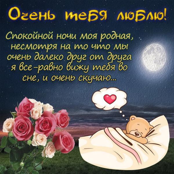 Спокойной ночи, моя родная