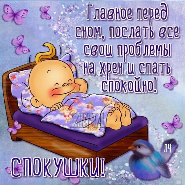Веселая открытка с пожеланием спокойной ночи