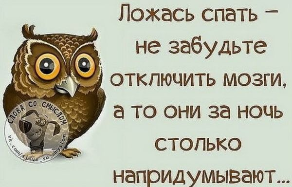 Прикольная сова желает спокойной ночи