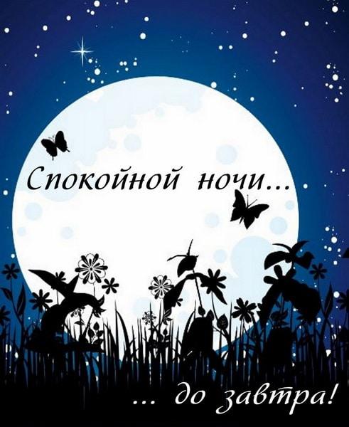 Спокойной ночи и до завтра