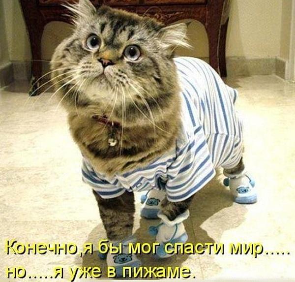 Конечно, я мог бы спасти мир, но я уже в пижаме