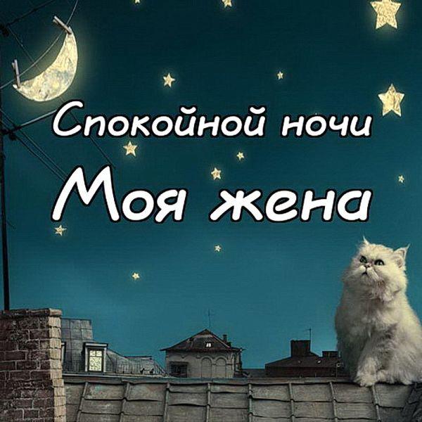 Спокойной ночи, моя жена