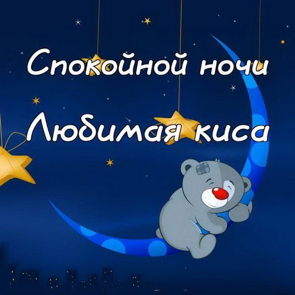 Спокойной ночи, любимая киса