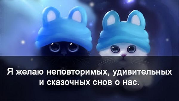 Смешные котята желают доброй ночи