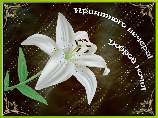 Пожелание приятного вечера и доброй ночи