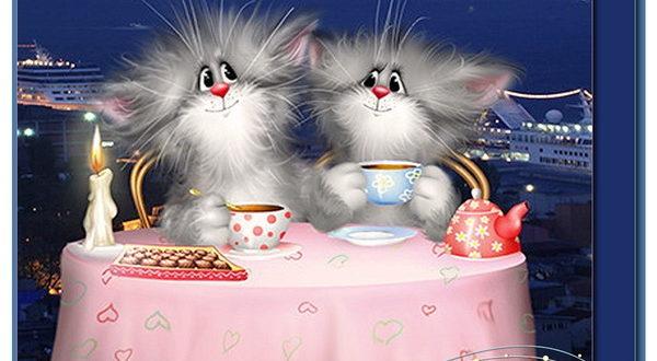 Смешные котики желают вам доброго вечера