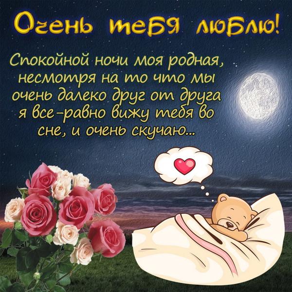 SMS сообщение спокойной ночи девушке