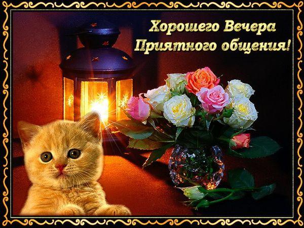 Хорошего вечера и приятного общения