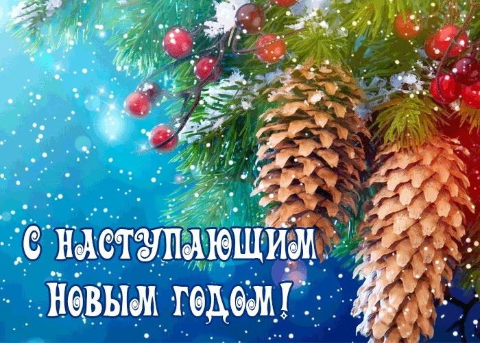 Поздравление с Новым годом сватье